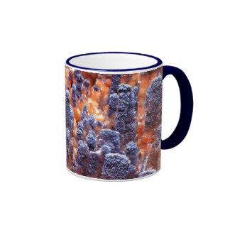 Crystals in a Strange Land Coffee Mugs