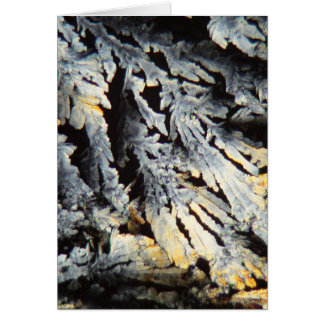 Crystals of Diclofenac under the microscope. Card