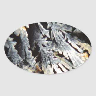 Crystals of Diclofenac under the microscope. Oval Sticker