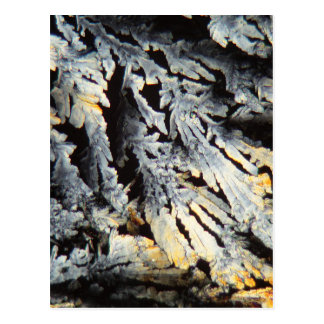 Crystals of Diclofenac under the microscope. Postcard