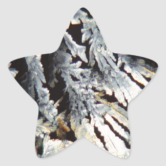 Crystals of Diclofenac under the microscope. Star Sticker