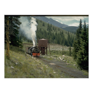 CS 2-8-0 #641. (train;tree;branch;clouds;)_Trains Poster