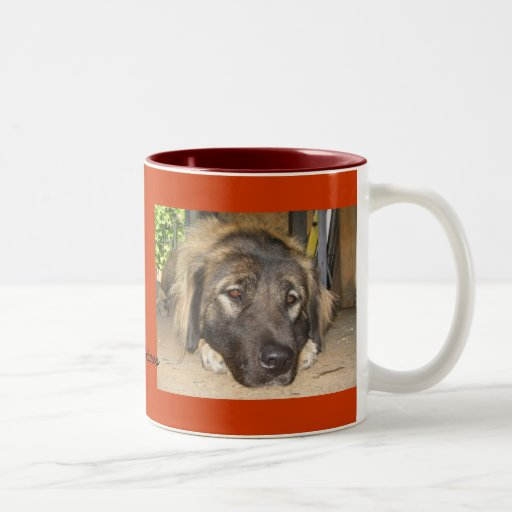 Csalfi Dog with Puppy Eyes Two-Tone Coffee Mug