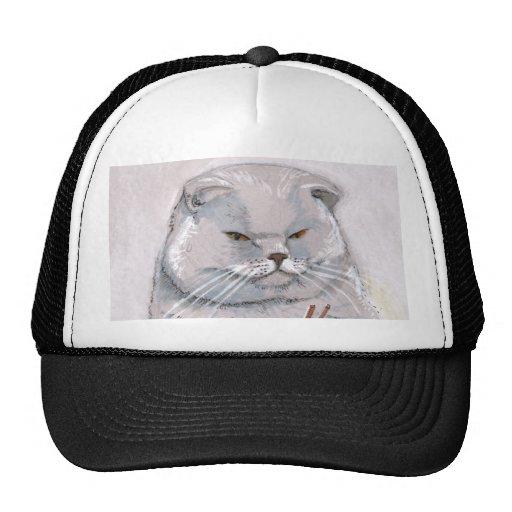 ©CSiravo de Sr. Grumps del gato del sushi Gorra