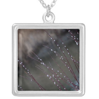 CSP Catkin Spring Silver Plated Necklace