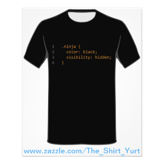 CSS Coding Ninja Flyers