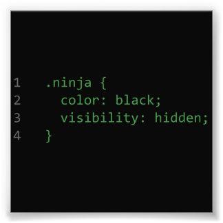CSS Coding Ninja Photo Print