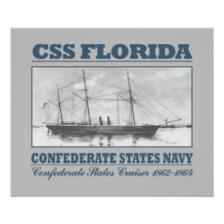 CSS la Florida Póster