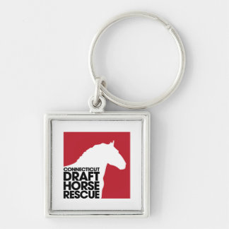 CT Draft Horse Rescue button keychain