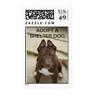 CT Underhound Railroad - Adopt Stamp