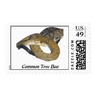 CTB Postage Stamp