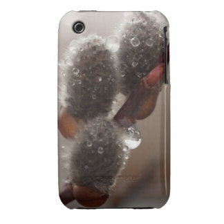 CTR Catkin Trio iPhone 3 Cover