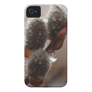 CTR Catkin Trio iPhone 4 Cover
