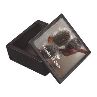 CTR Catkin Trio Jewelry Box
