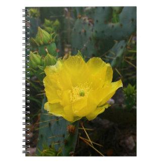 Cuaderno amarillo de la floración del cactus
