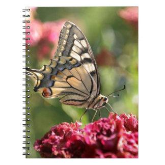 Cuaderno amarillo de la foto de la mariposa de Swa
