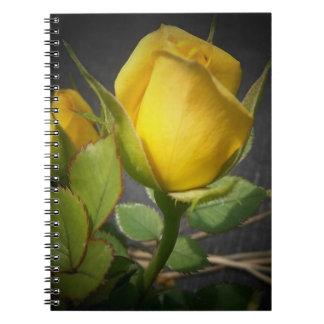 Cuaderno amarillo del capullo de rosa