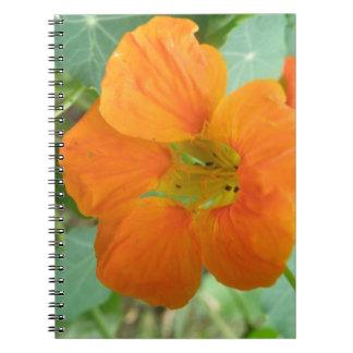 Cuaderno anaranjado bonito de la flor de la capuch