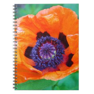Cuaderno anaranjado de la flor de la amapola