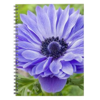 Cuaderno azul de la flor del aster