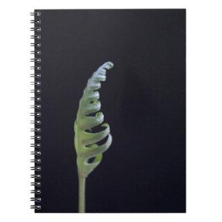 Cuaderno biodiversidad