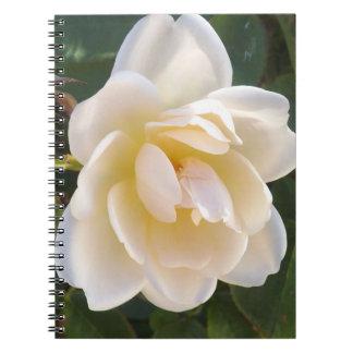 Cuaderno blanco del satén