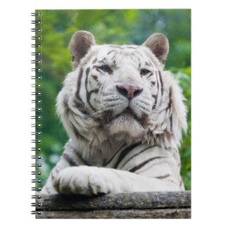 Cuaderno blanco del tigre