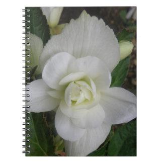 Cuaderno blanco hermoso del clavel
