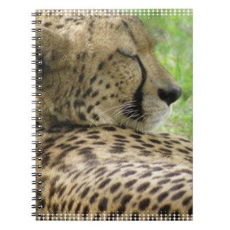 Cuaderno cansado del guepardo