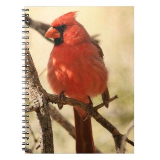 Cuaderno cardinal rojo