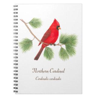Cuaderno cardinal septentrional del ejemplo