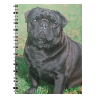 Cuaderno chino negro del perro del barro amasado