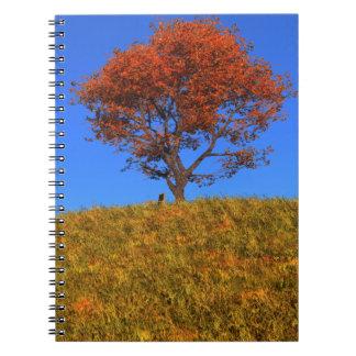 Cuaderno claro del día del otoño