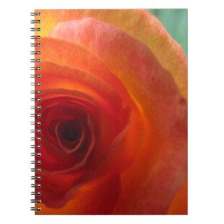 Cuaderno color de rosa anaranjado