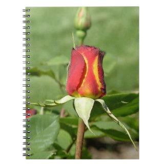 Cuaderno color de rosa llameante