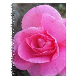 Cuaderno - color de rosa rosado