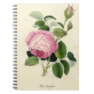 Cuaderno color de rosa rosado del vintage
