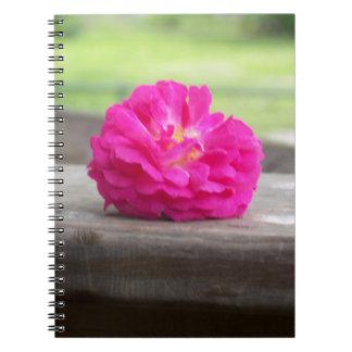 Cuaderno color de rosa salvaje