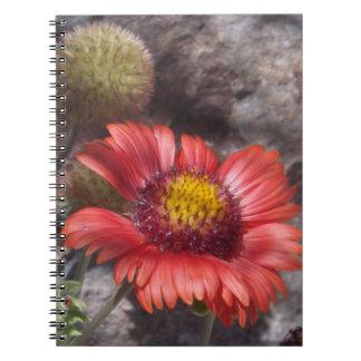 Cuaderno combinado indio rojo