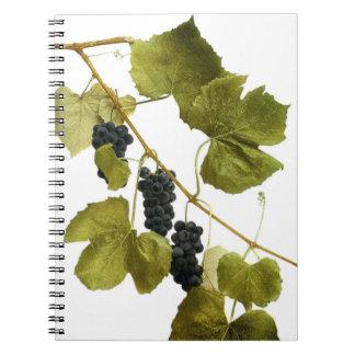 Cuaderno con los racimos de la uva en diseño del v
