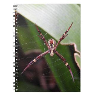 Cuaderno cruzado de la araña de St Andrew