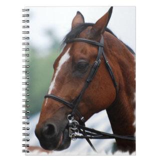 Cuaderno cuarto del perfil del caballo