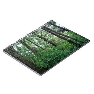 Cuaderno de Alaska de maderas