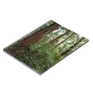 Cuaderno de Alaska del bosque
