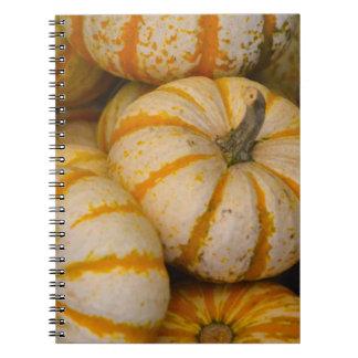 Cuaderno de la calabaza