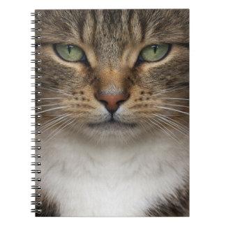 Cuaderno de la cara del gato de Tabby