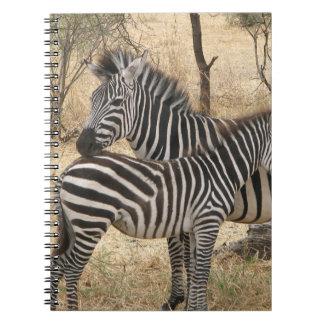 Cuaderno de la cebra de la madre y del bebé