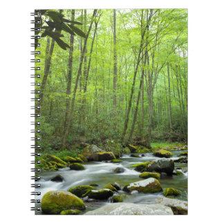 Cuaderno de la corriente del bosque de la