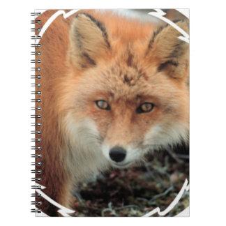 Cuaderno de la especie del Fox