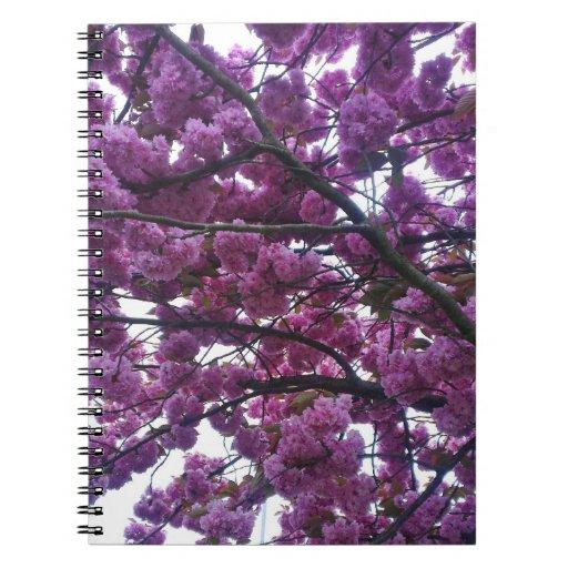 Cuaderno de la flor de cerezo